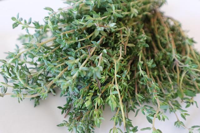 tomillo-hierbas-especias-condimentos-cocina-gastronomia